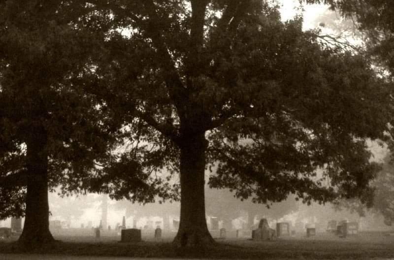 Six Ways to Work With Ancestors
